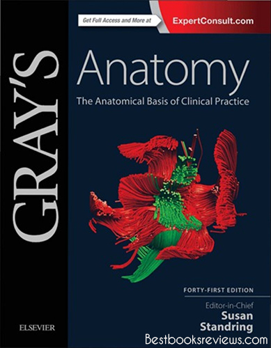 Anatomical Basis of Clinical Practice